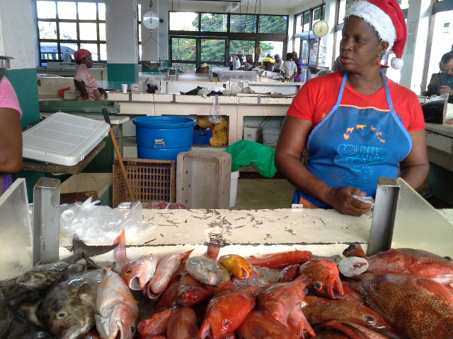 Value chain analysis will also look at improving the supply of fresh reef fish at Caribbean markets