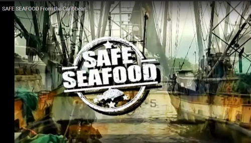 VIDEO: Safe Seafood from the Caribbean
